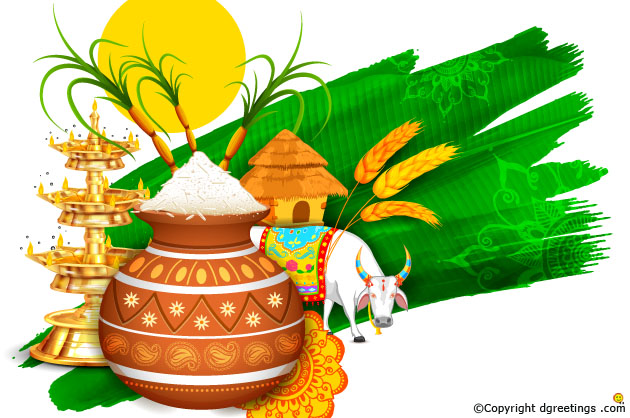 essay about pongal festival in tamil Here's all you need to know about pongal, the harvest festival of tamil nadu being celebrated this week.